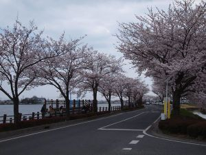 Isanuma201104c