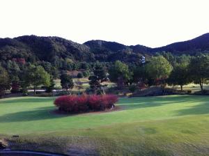 Golf201111