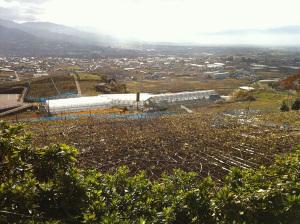 Katsunuma2011b
