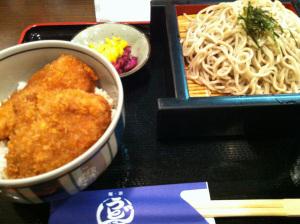 Niigata2011a