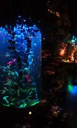 Disney201101b