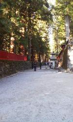 Nikko201101_2