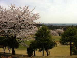 Golf20120413c