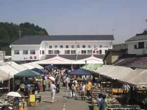 Tamura201205a