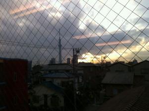 Doyu20121127a