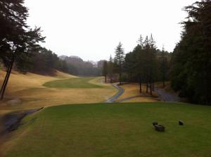 Golf201304