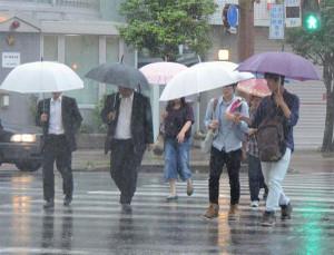Tsuyuiri2013b