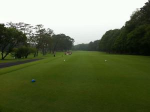 Golf201307b