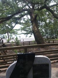 Miyaji201307b