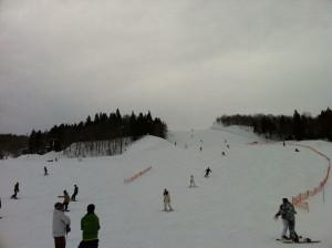 Ski201401a