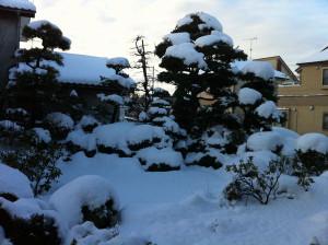 Snow201402a