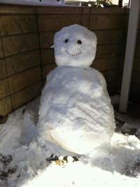 Snow201402b