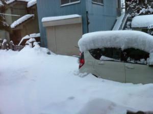 Snow20140215a