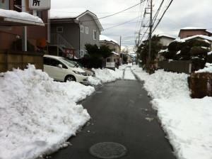 Snow20140215b