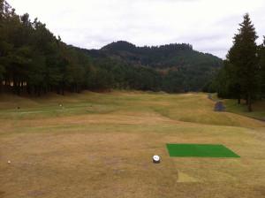 Golf201411