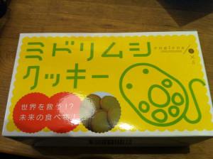 Midorimushi201501
