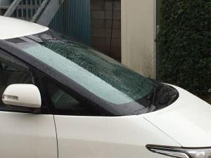 Rain201903a
