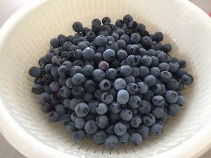Blueberry201907